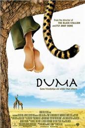 杜玛(2005)