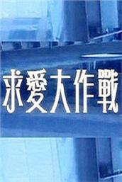 求爱大作战2013