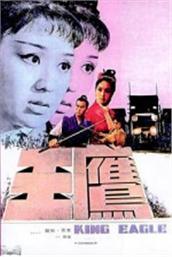 鹰王(电影)