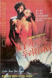 女性不要害怕晚上(韩国)