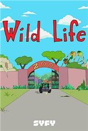 野生动物 第一季