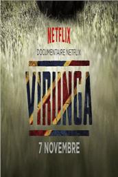 维龙加(2014)