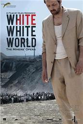 白白的世界